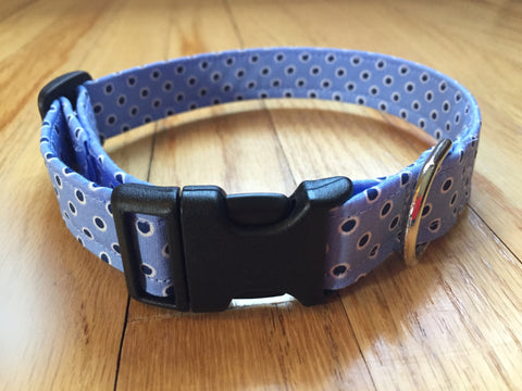 Smarty Pants Collar