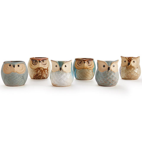 Ceramic Owl Pots (Set of 6)
