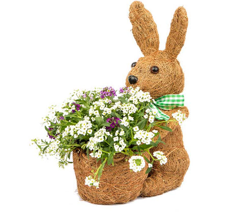 Adorable Bunny Coco Planter