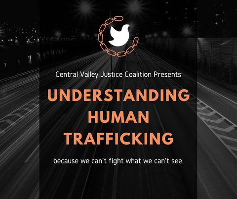 Understanding Human Trafficking (Zoom class, live instruction)