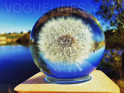 Handmade - Real Dandelion Floating in Crystal Ball - Touch Control Lighting (Night Light)