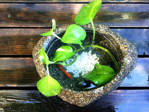 Natural Stone Flower Pot / Planter / Fish Tank (1)
