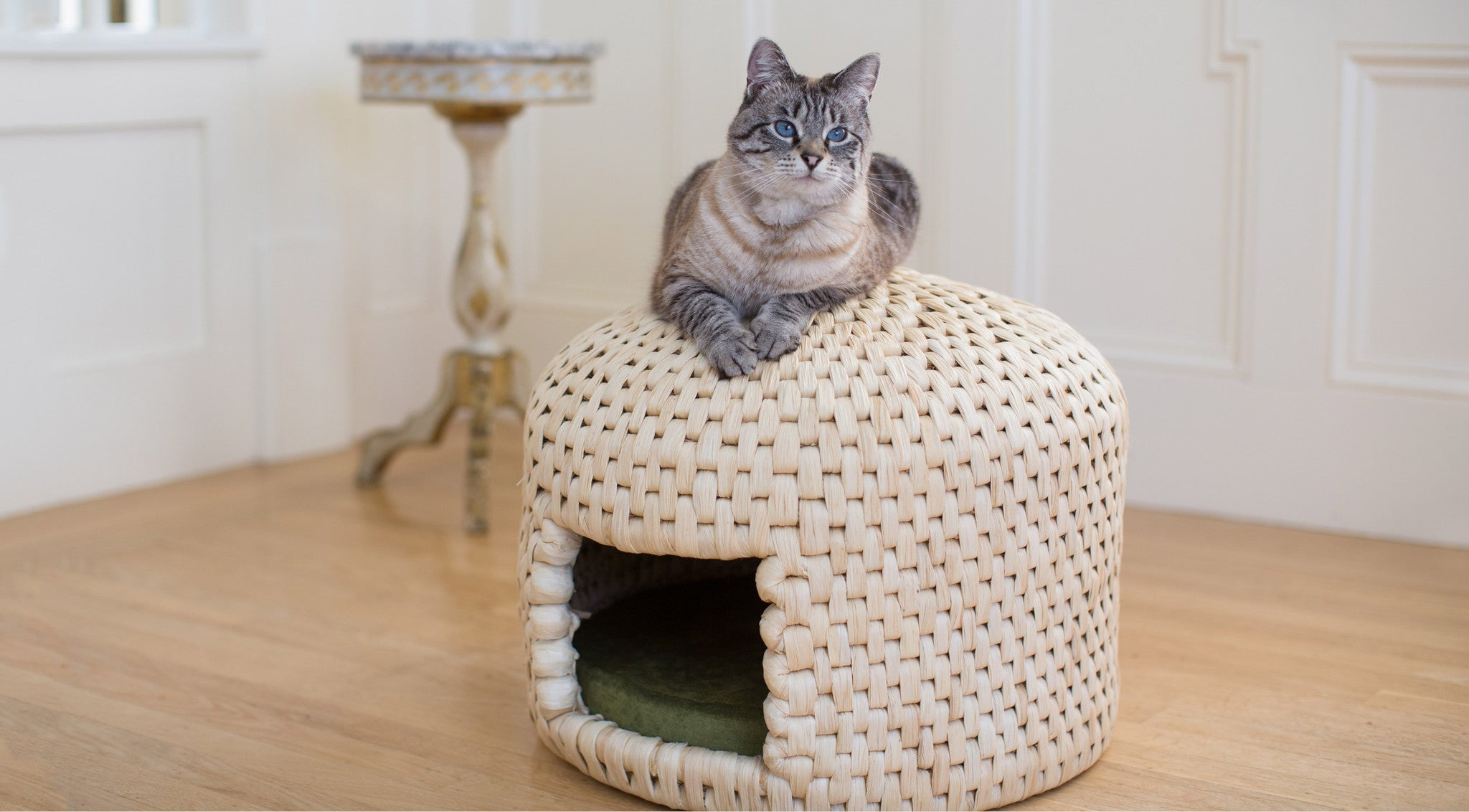 Cat relaxing on top of neko chigura eco friendly handwoven straw cat bed house