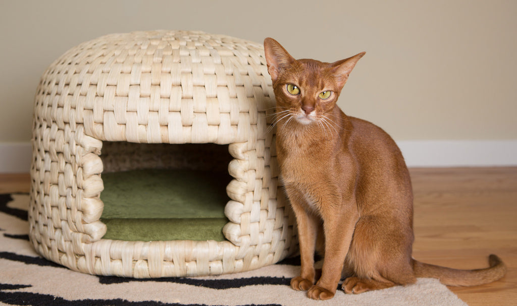 Cat loves eco friendly all natural neko chigura straw cat bed house