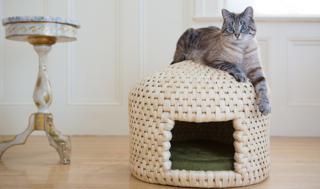 Cat lounging on eco friendly neko chigura straw cat bed house