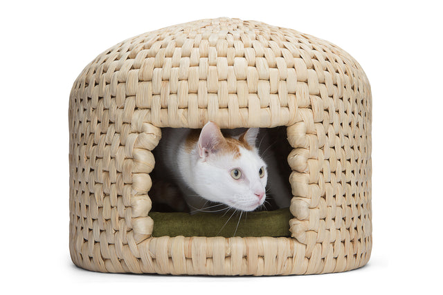 Cat peeking out of neko chigura eco friendly handwoven straw cat bed house