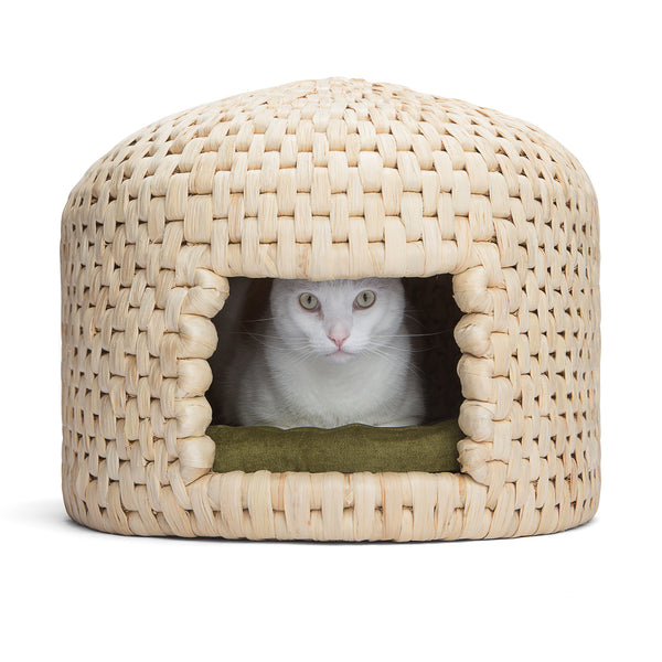 Cat relaxing in eco friendly handwoven neko chigura straw cat bed house