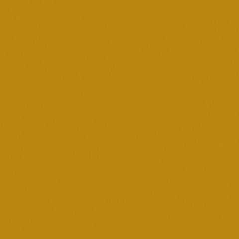 ACCENT PAINT BUTTERNUT 14