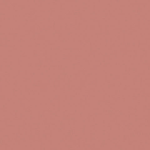 METAL PAINT  BLUSH CK