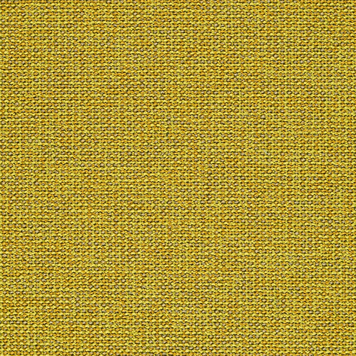 Adage - Photon - 4069 - 14 - Half Yard