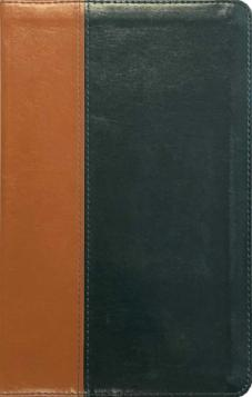ESV Anglicized Edition