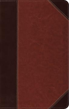 ESV Thinline Reference Bible Brown/Cordovan