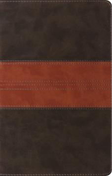 ESV Thinline Reference Bible Forest/Tan
