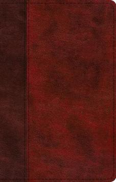ESV Journaling New Testament Inductive Edition