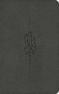 ESV Kid's Bible Compact, TruTone, Sword of the Spirit Design