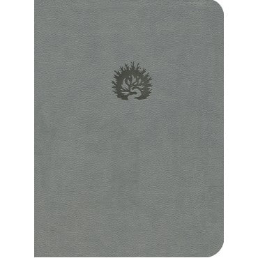 ESV Reformation Study Bible Lth Like Light Grey (ePub eBook)
