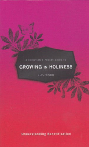 A Christian's Guide to Growing in Holiness