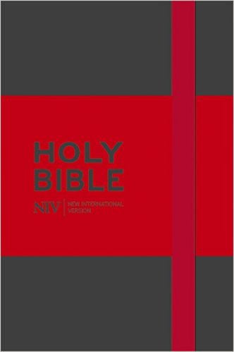 Holy Bible: New International Version (Grey Notebook Bible)