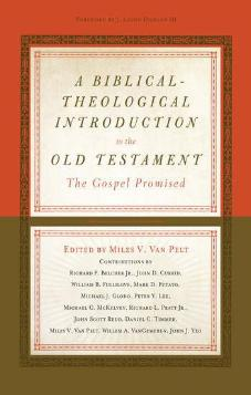 Copy of A Biblical-Theological Introduction to the Old Testament: The Gospel Promised (Used Copy)