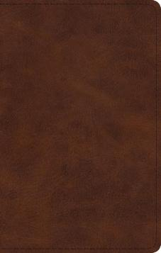 ESV Large Print Thinline Bible (Deep Brown)