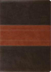ESV Study Bible  TruTone®, Forest/Tan, Trail Design