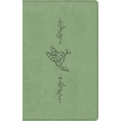 ESV Kid's Bible (thinline, TruTone, Bird of the Air)