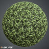 Grass Vol.21 - Hand Painted Texture Pack - LowlyPoly
