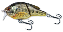 102 Bluegill Metallic / Gloss