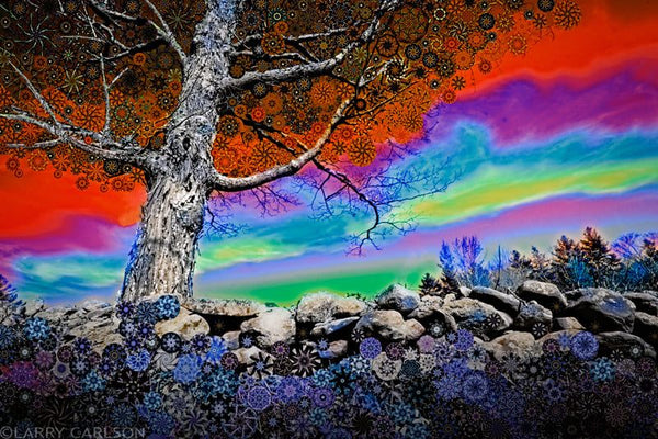 Old Stone Wall - psychedelic art