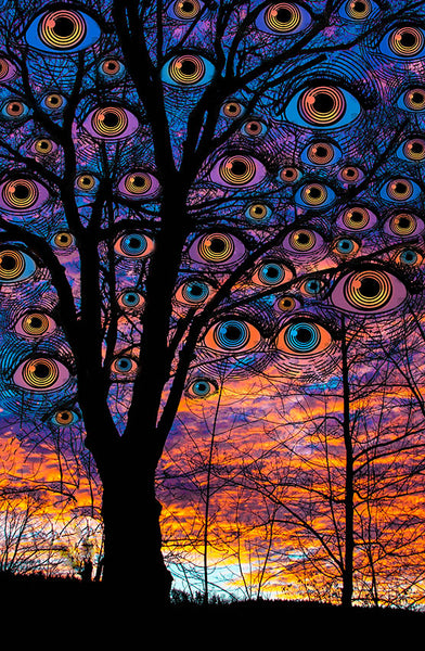 Sunset Eyes - psychedelic art