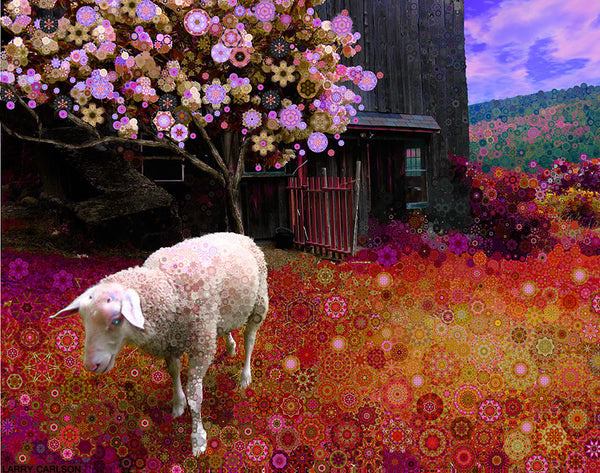 Maple Hill Sheep - psychedelic art