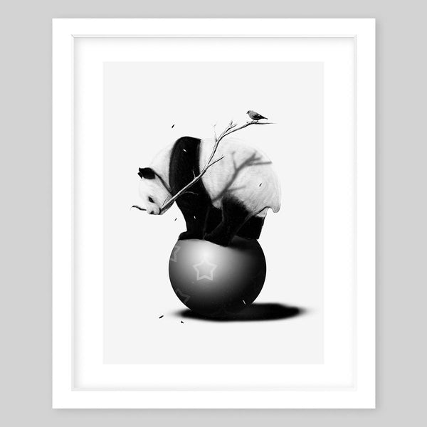 White framed art print in black & white illustrating a panda bear balancing on a ball and holding a tree branch