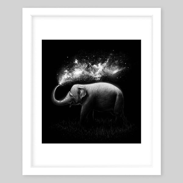 White framed art print illustrating a black & white portrait of an elephant splashing water out of its trunk