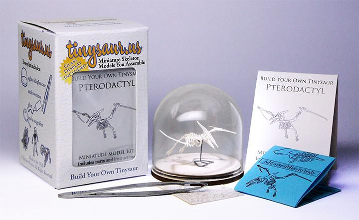 Pterodactyl all-in-one-kit