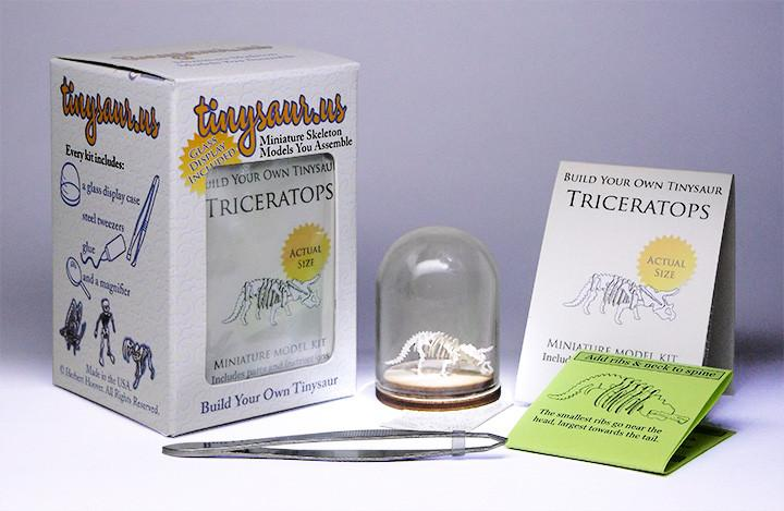 Triceratops all-in-one kit