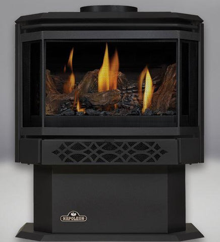 Napoleon Haliburton Direct-Vent Gas Stove