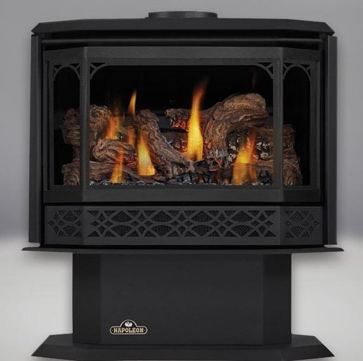 Napoleon Havelock Direct-Vent Gas Stove - Chadwicks & Hacks, Hamilton Ontario