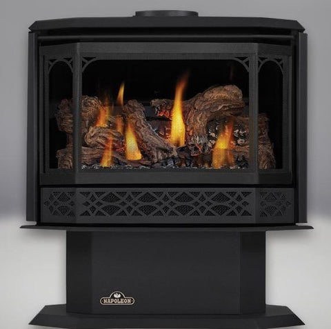 Napoleon Havelock Direct-Vent Gas Stove