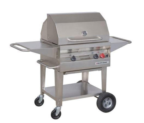 "24"" Silver Giant Residential BBQ"