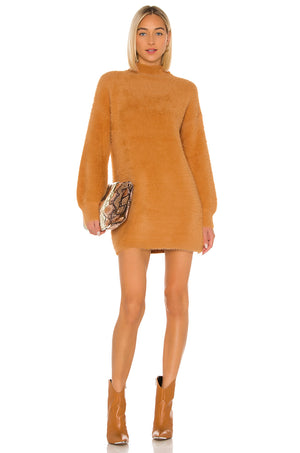 Honey Bear Sweater Dress
