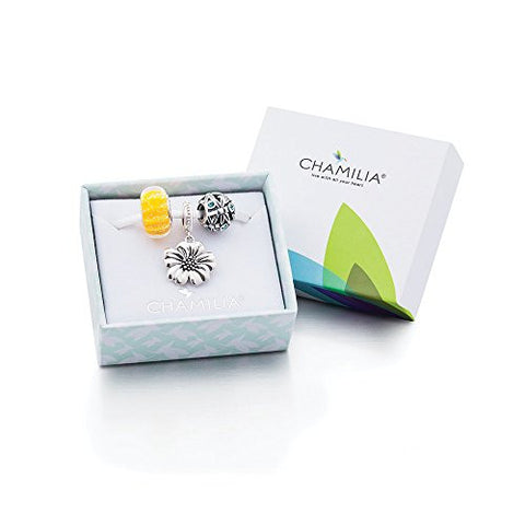 Dreams Take Flight Charm Gift Set - 4010-0422