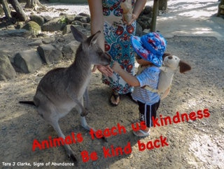 Most Animals are Kind if only we were all kind back in return