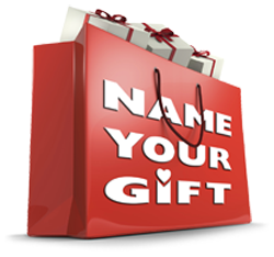 Name Your Gift