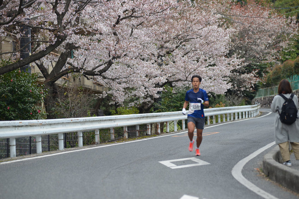 6th Miyajima Marathon Entry Runners List(Also By  Country/Area/Province)