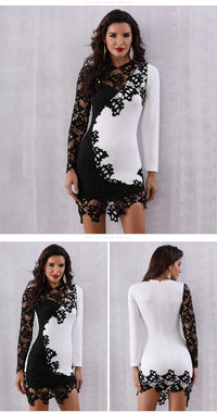Evening Party Sexy Lace Club Dress