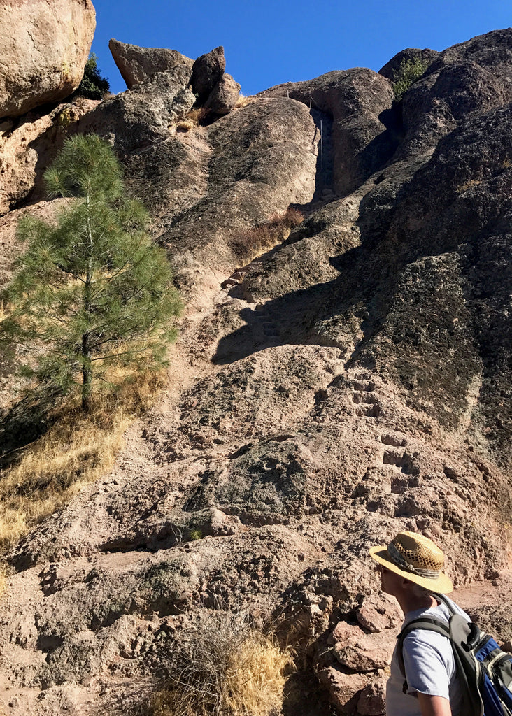 Day Trip to Pinnacles National Park