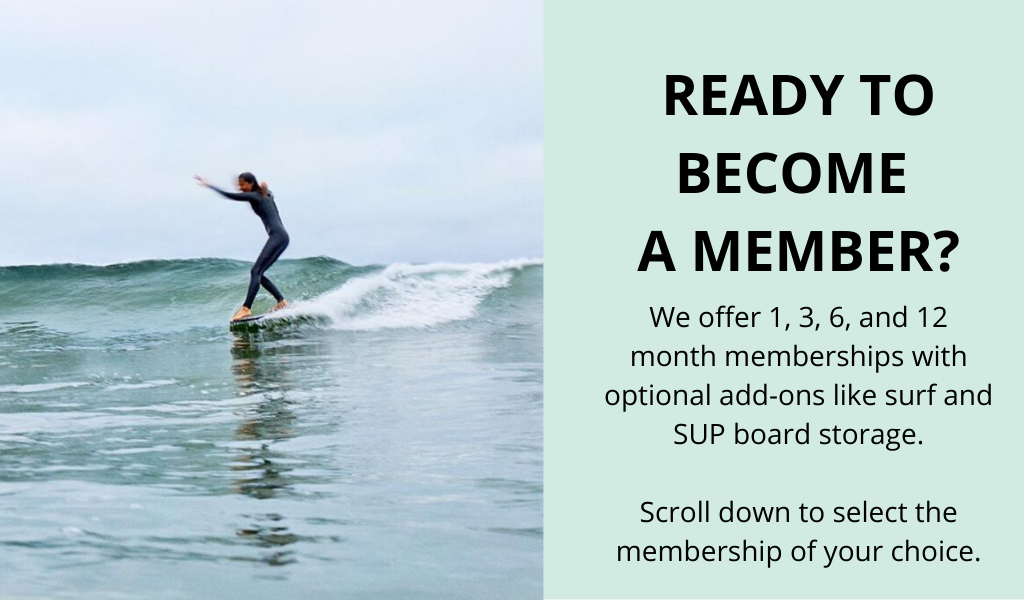 Want to be a Traveler Surf Club Member?
