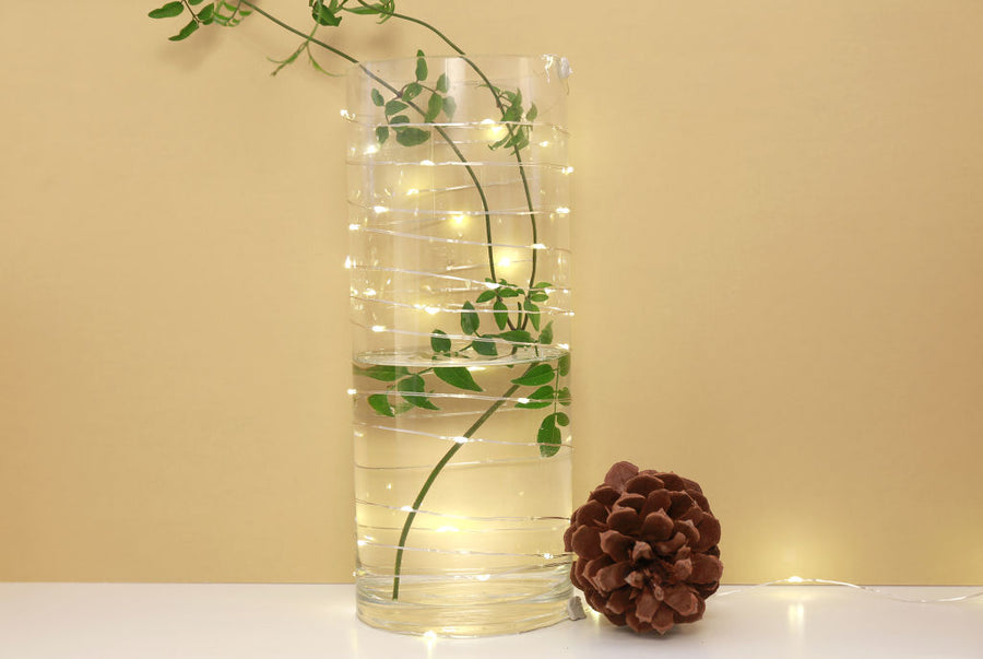 Extra Long Silver String Lights