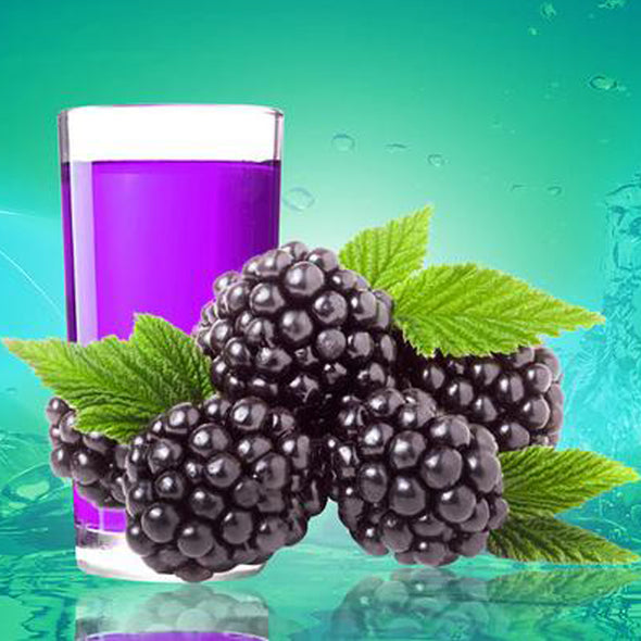 Blackberry (15 Pack) 500ml