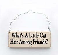 wood sign saying What's a Little Cat Hair Among Friends